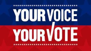 your_vote.jpg