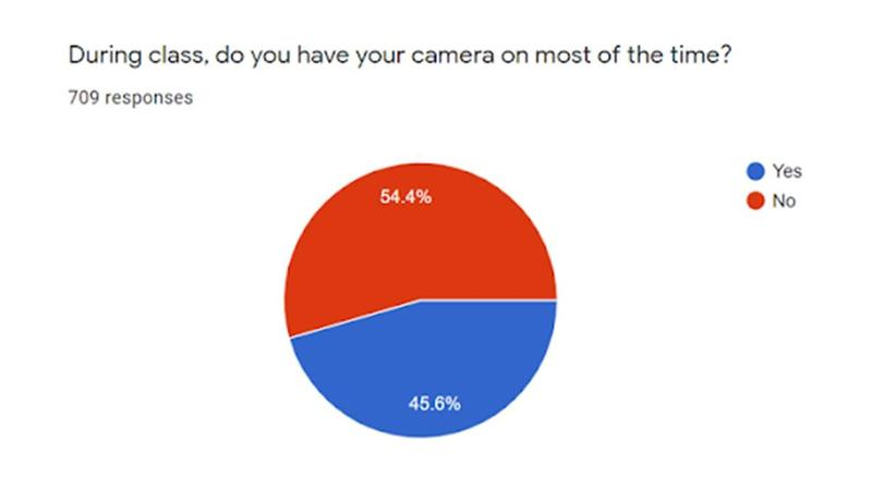 Camera survey 1