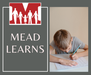 Mead Learns