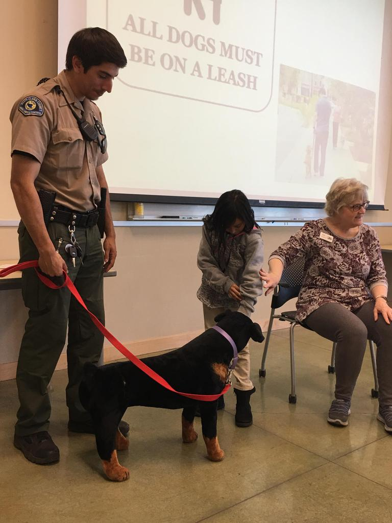 animal patrol officer demonstrates how to approach dog