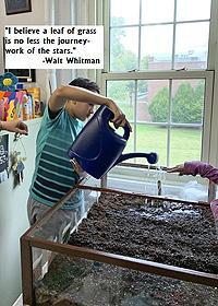 """""""I believe a leaf of grass is no less the journey-work of the stars."""" -Walt Whitman, image of a Van Cleve student watering the classroom garden."""