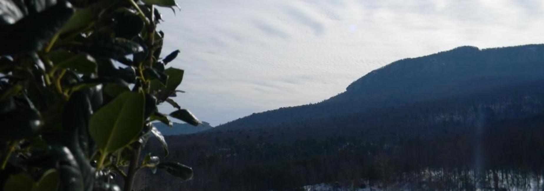 Snow-Hanging Rock