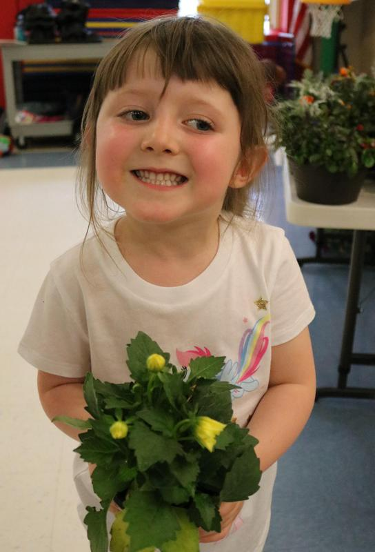 Photo of Lincoln School kindergartner holding plant during PTO annual Flower Patch.