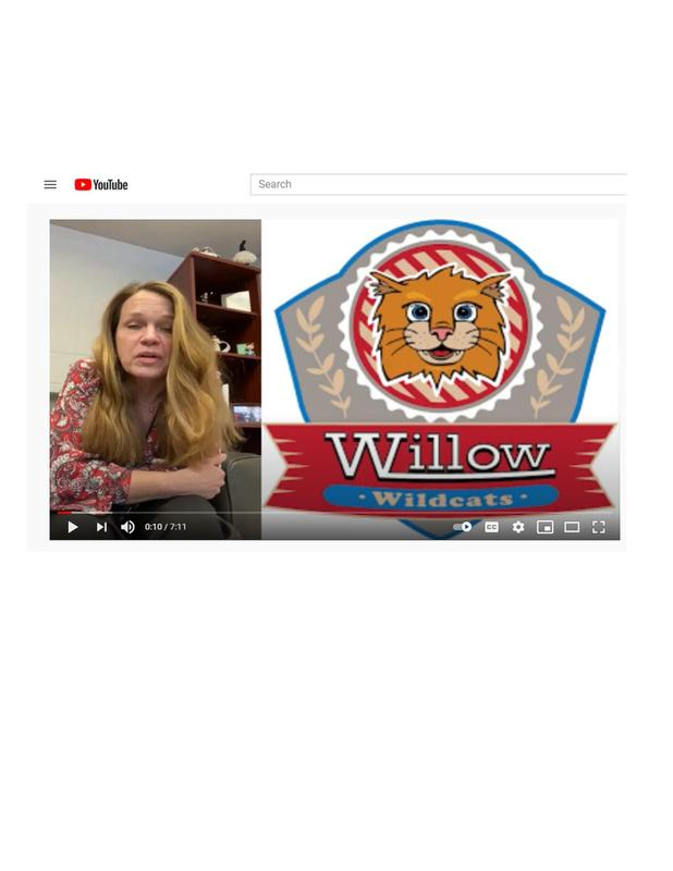 WI video.jpg