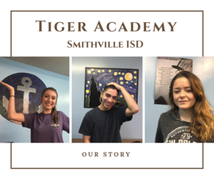 Tiger Academy (2).png