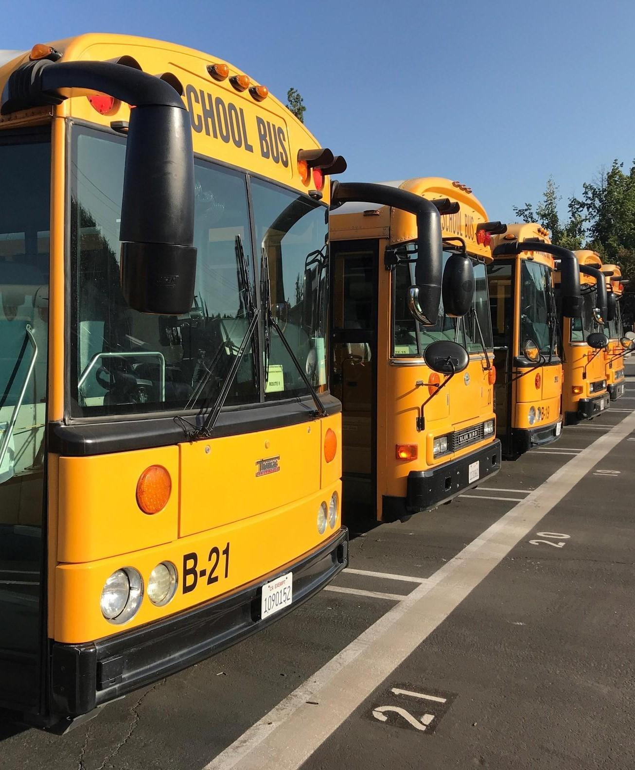 school bus fleet