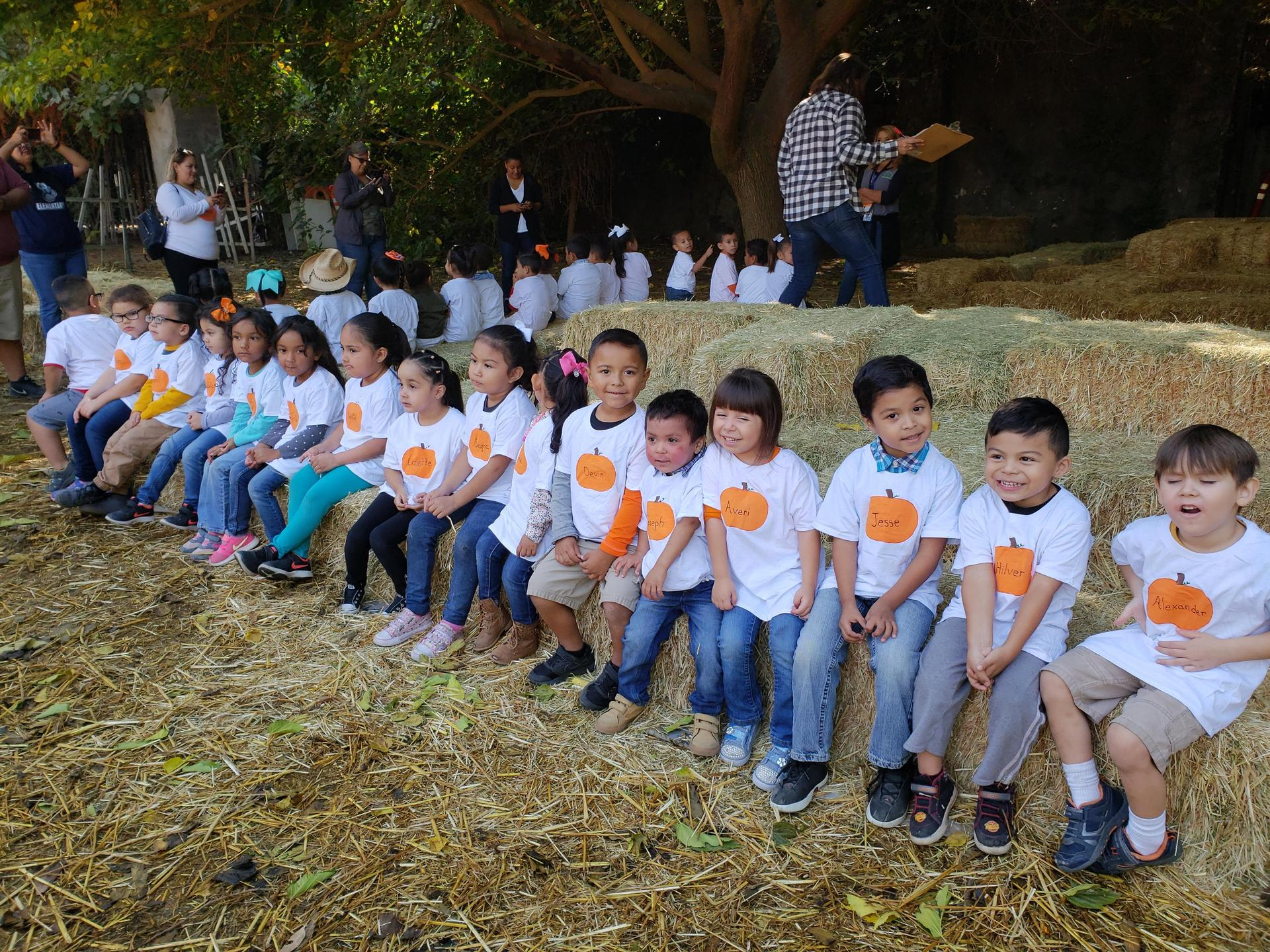 Students on a field trip to pumpkin patch