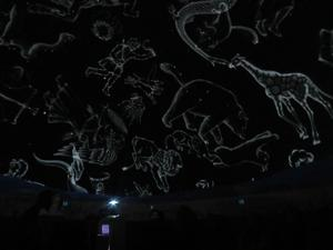 Some of the constellations as seen in the Digital Star Lab.