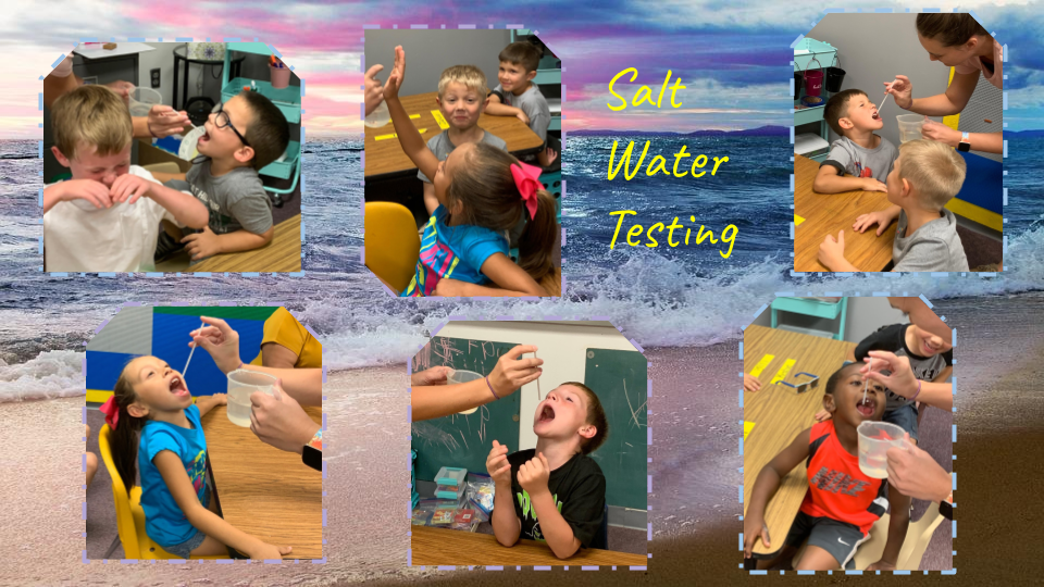 Kids testing salt water