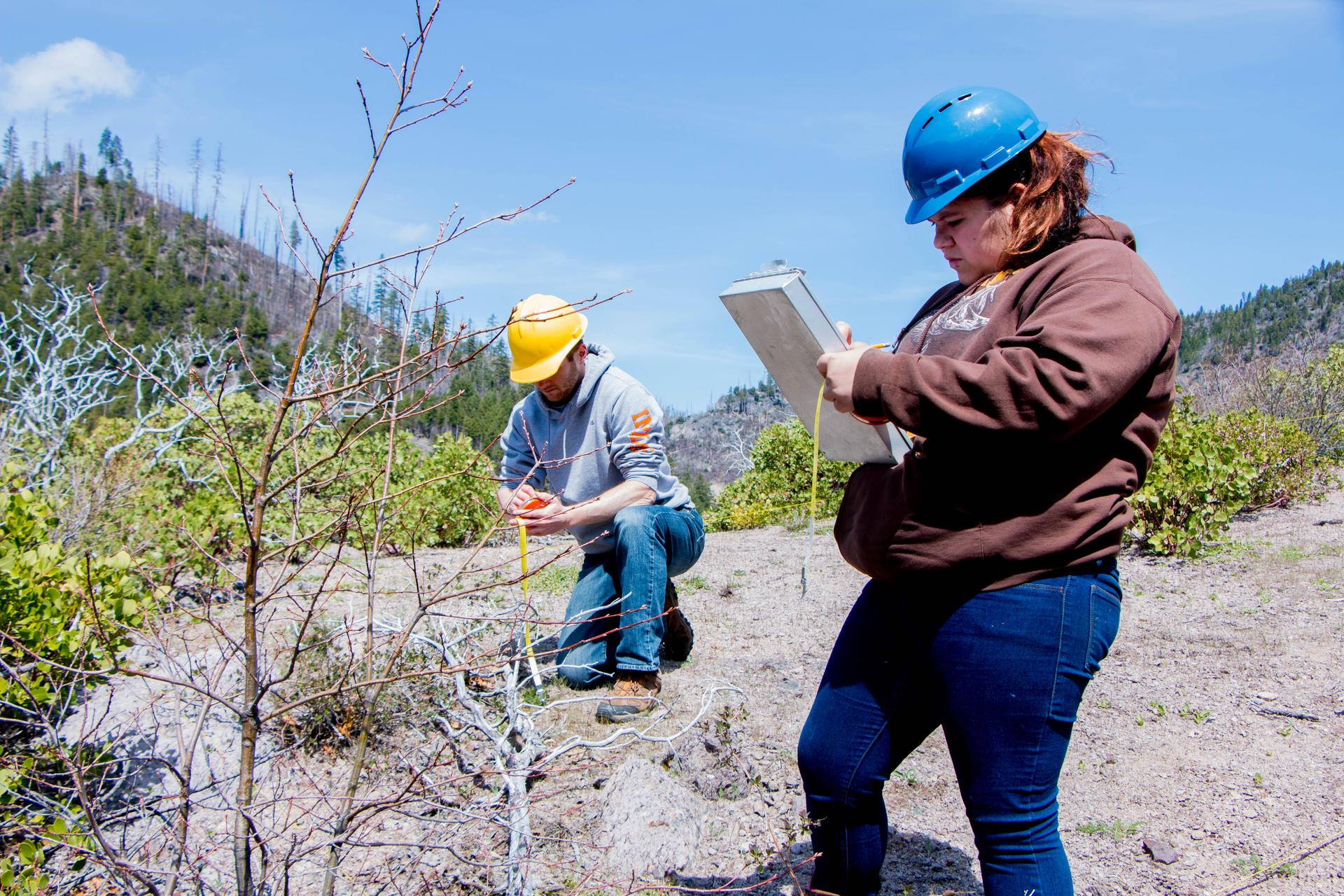Student Doing Monitoring Work on Moonlight Fire Area