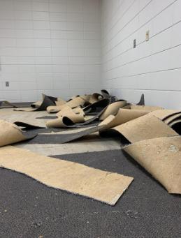 6-12 Carpet Removal