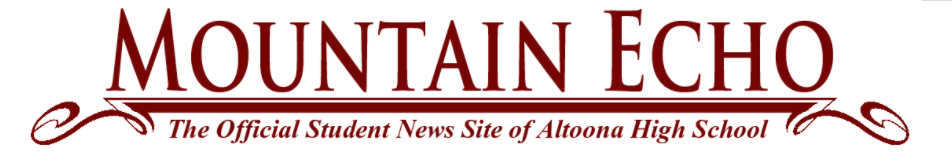 Mountain Echo Logo