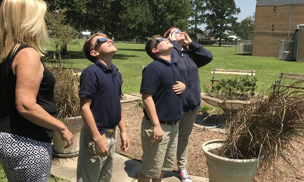 Viewing the eclipse