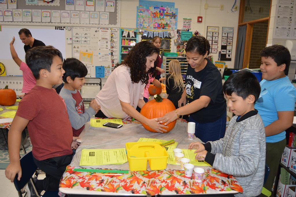 Ardmore 2nd grade- Peluso Pumpkin Math