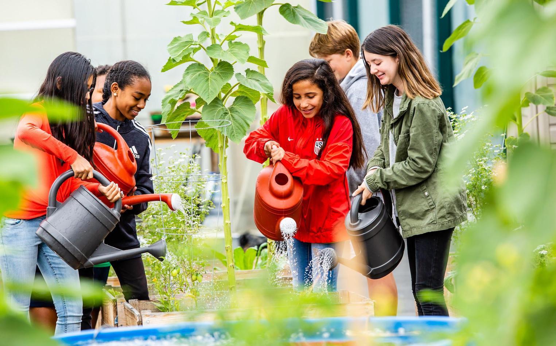 Students in school garden, watering plants.