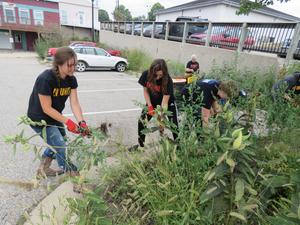 TKHS students weed and clean up landscape areas in the village.