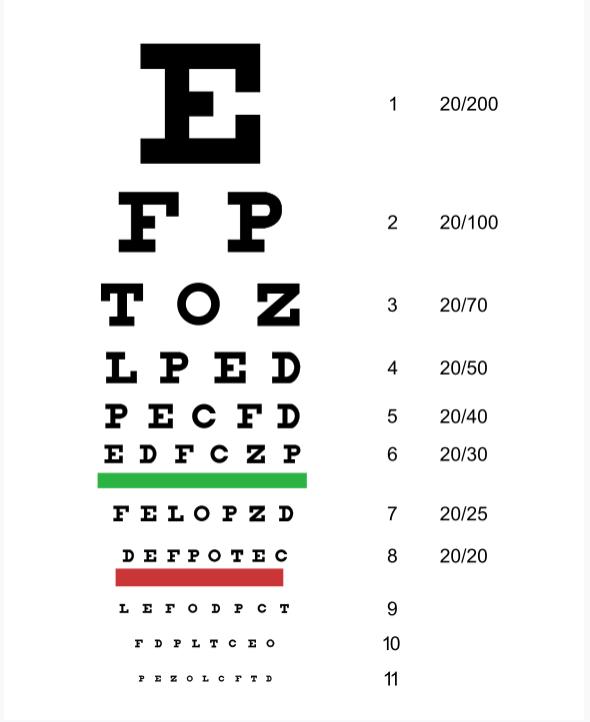 Tropical Optical & CPS Student Eye Exams/Tropical Optical y exámenes de vista para estudiantes de CPS Featured Photo