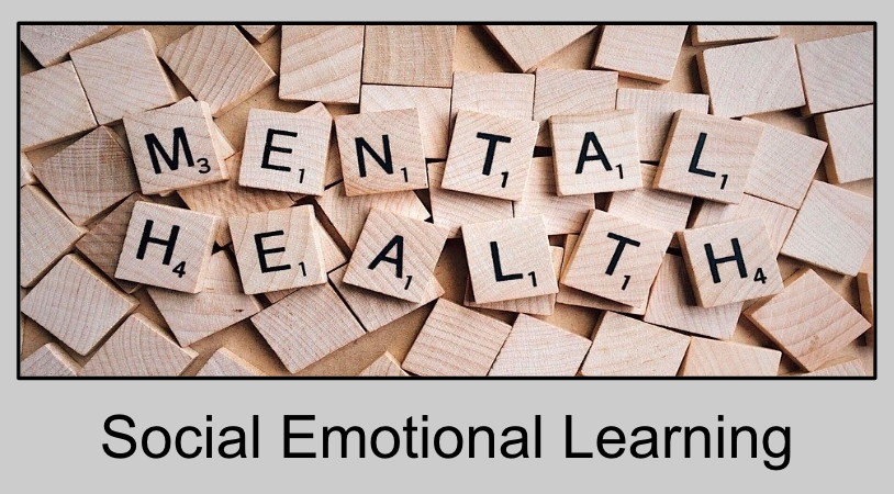 A picture that says Mental Health and Social Emotional Learning to introduce this section.