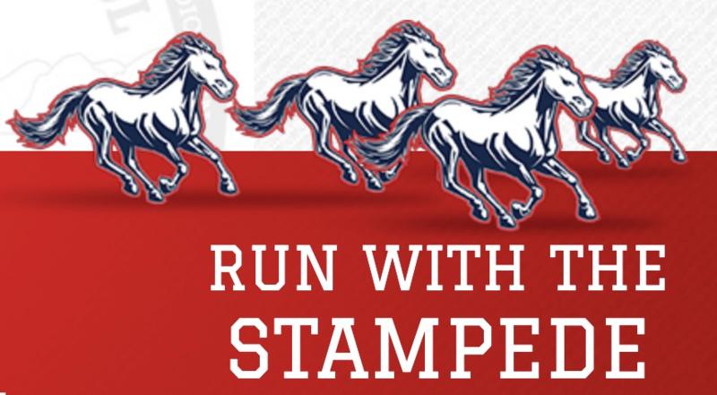 Mustangs stampede on.