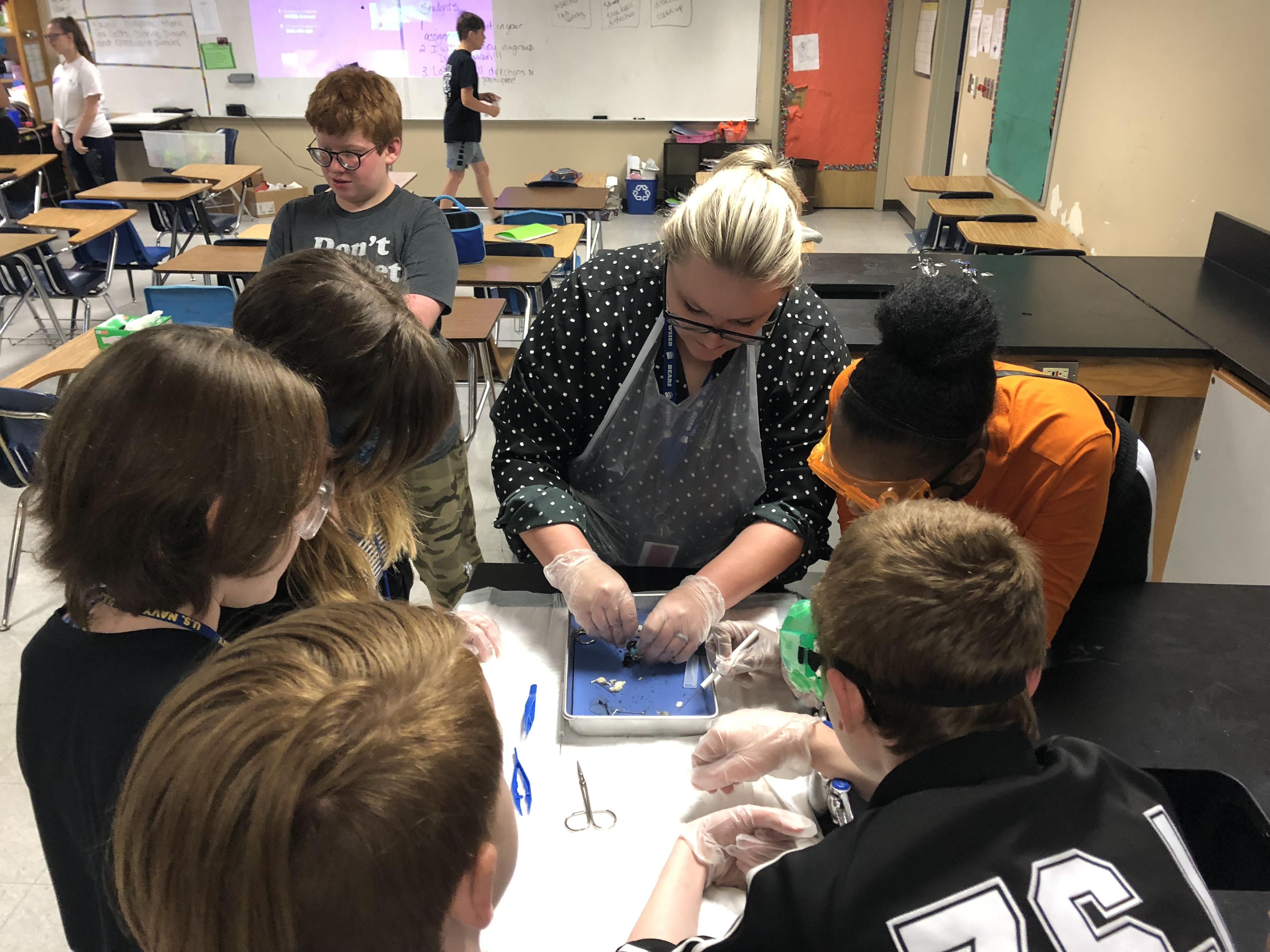 xSeventh graders in Melanie Meredith's science class didn't stop learning during the last week of school. They further explored their unit on body systems and dissected a sheep's eyeball!