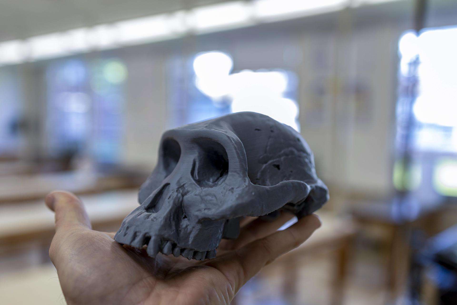 Lucy 3D Print (Prusa Silver PLA)