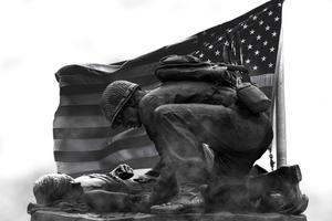 Veteran's Day Soldiers