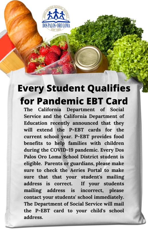 Pandemic EBT Card flyer (English) REV2.png