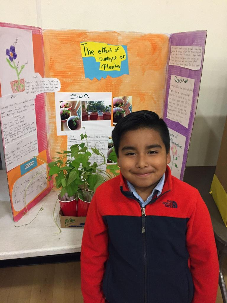 student stands in front of science fair project: the effect of sunlight on plants