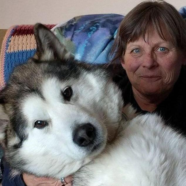 Sue Crawford's Profile Photo