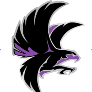 fern hill falcon .png