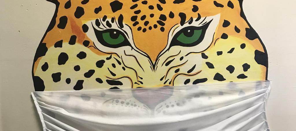 Jaguar wearing a mask
