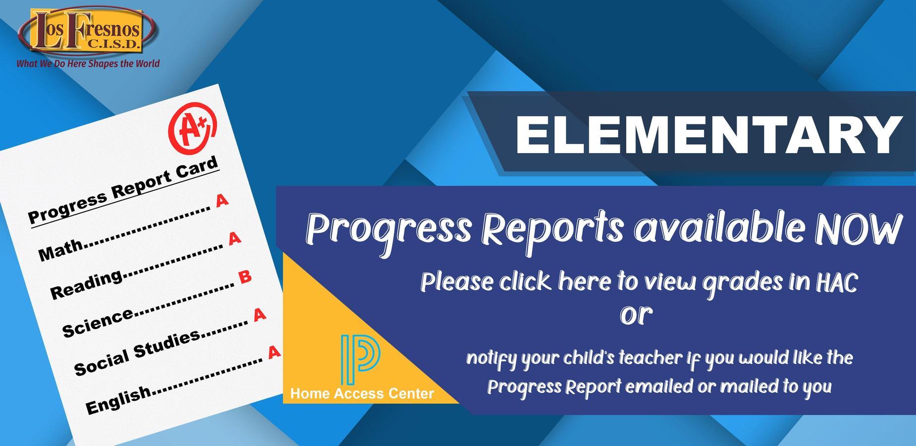 Progress Report Banner