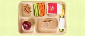 schoollunchtray.jpg