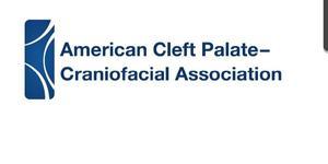 ACPA logo.jpg