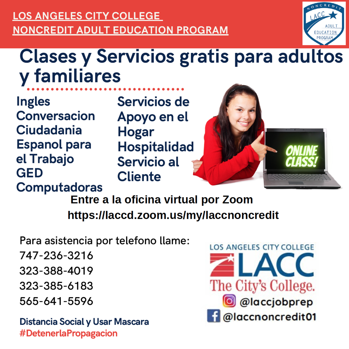 classes de verano en LACC