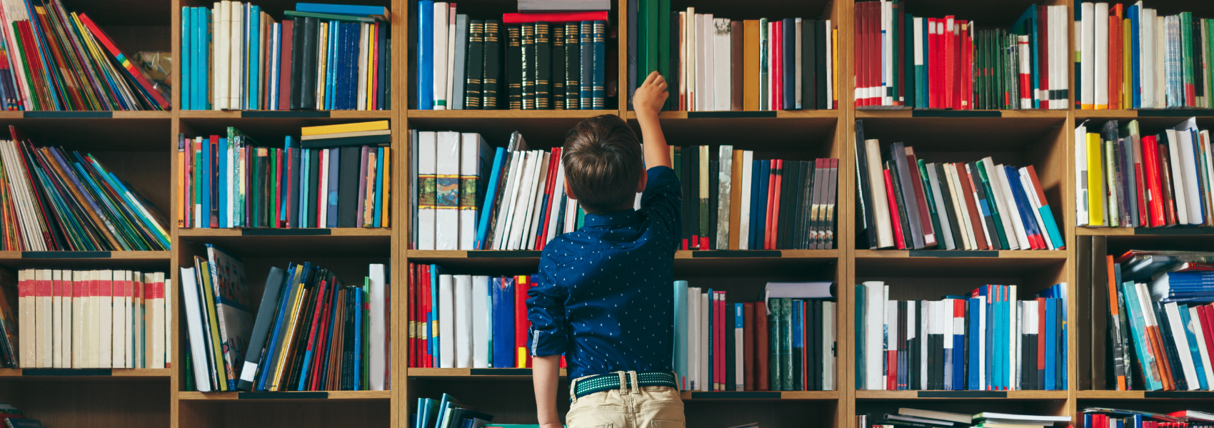 Boy searching for a library book