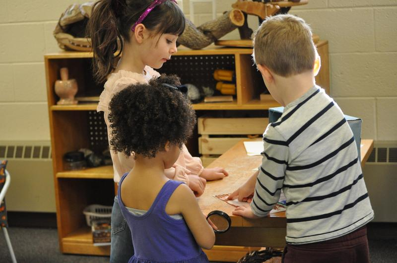 Kindergarten dioramas Featured Photo