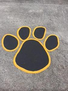 Black and Gold Paw