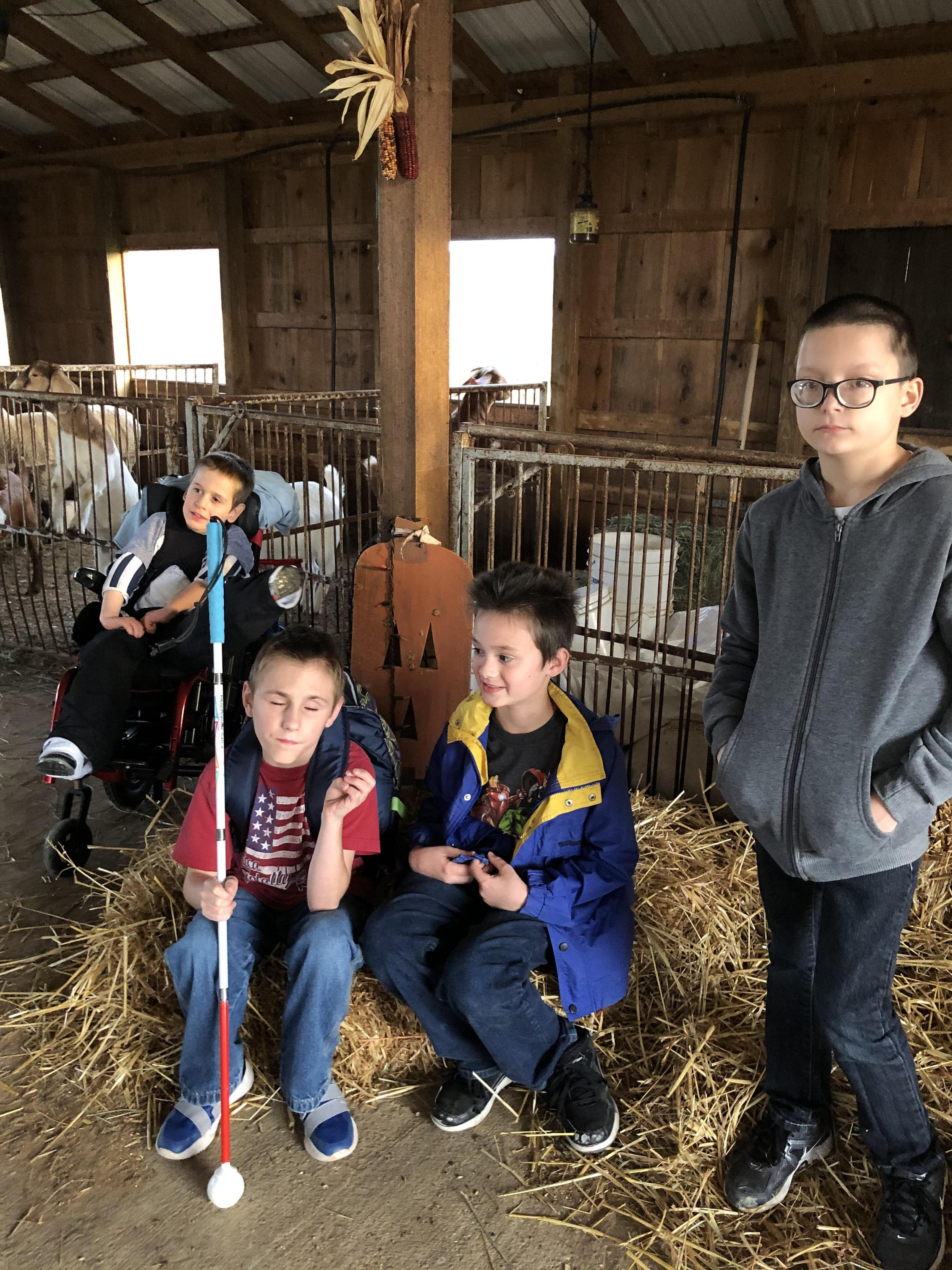 4 male students pose with farm animals in the background