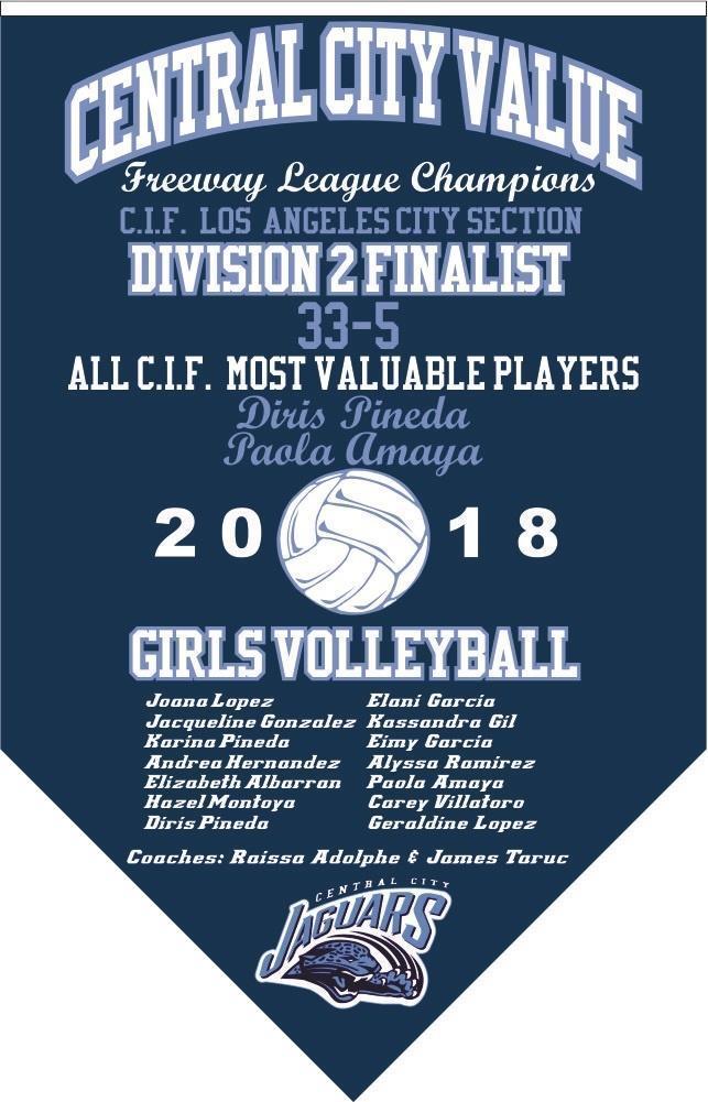 2018 Girls Volleyball Finalists Banner
