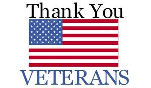 961d69275a7e78b42c9523d4c0dd1675_3-easy-ways-to-celebrate-veterans-day-occasionally-crafty-3-veterans-thank-you-clipart_540-314.jpg
