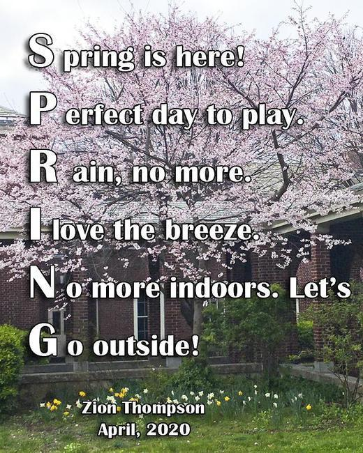 Spring poems by VC2