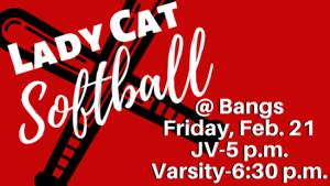 Lady Cat Softball