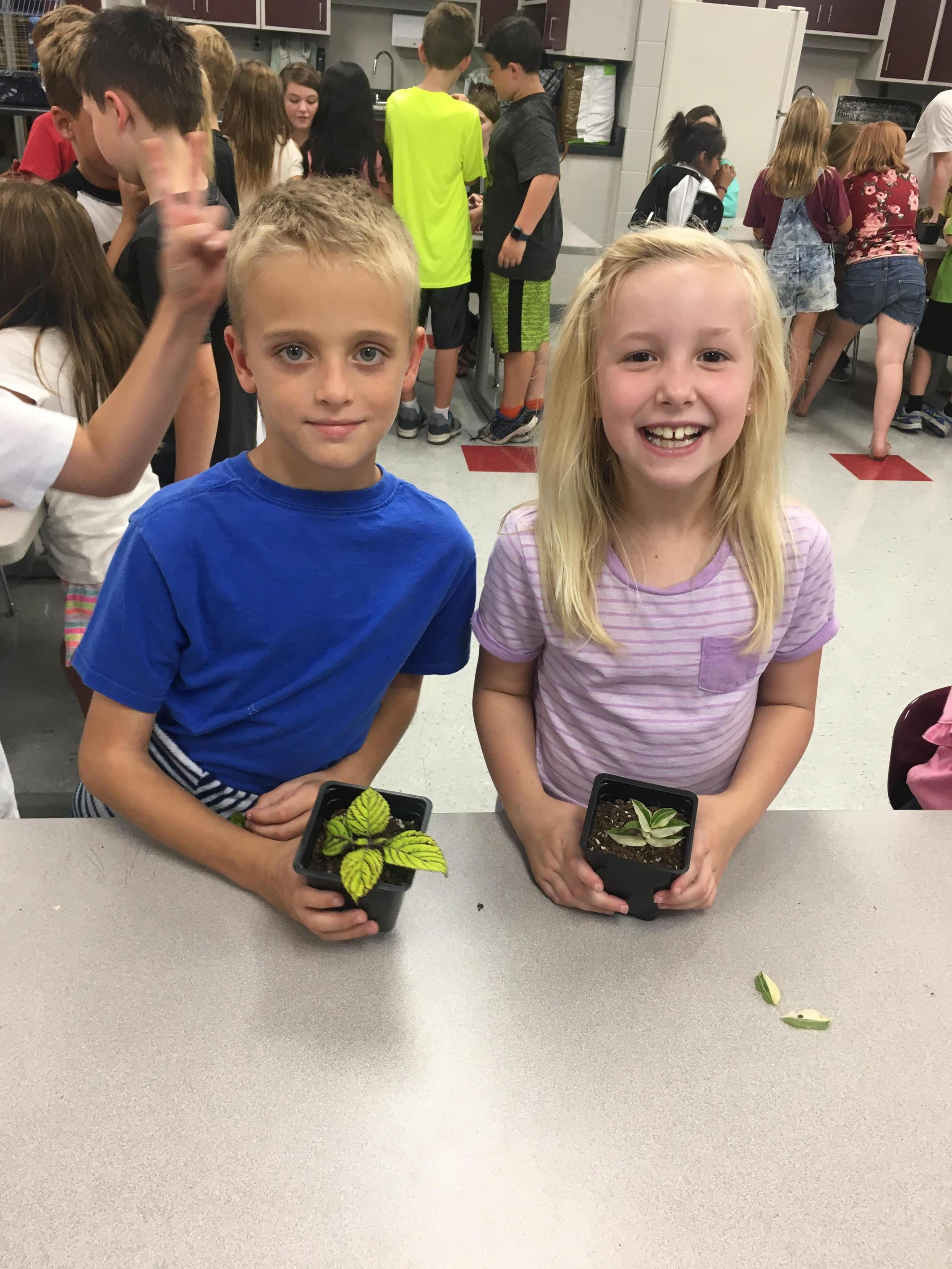 Learning all about plant life!