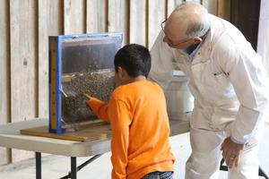 A JSE 2nd grader discusses honey bee exhibit with a bee keeper