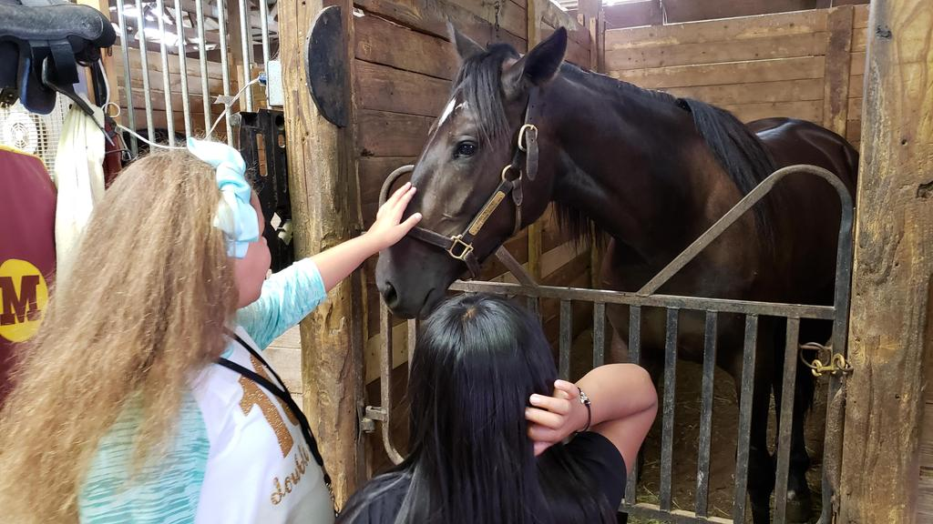 students petting horse