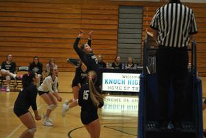 Picture of volleyball game