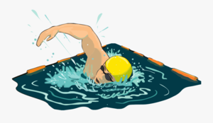 Swimming.png