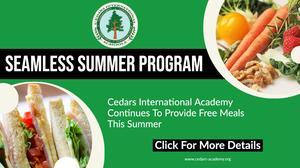 Seamless Summer Program