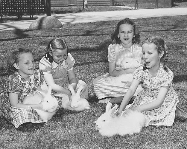 4 young girls with rabbits
